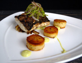 Grilled Rockfish with Petite Fennel, Cubanelle, Red Onion Russet Coins, Chile Aioli at 1700 Degrees Steakhouse in Harrisburg